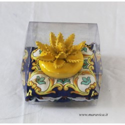 Aloe plant in Sicilian ceramic from Caltagirone in yellow...